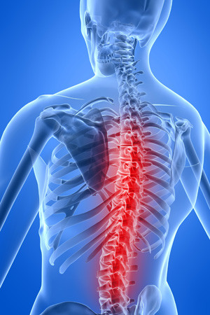Spine Care & Surgery | Concord Orthopaedics